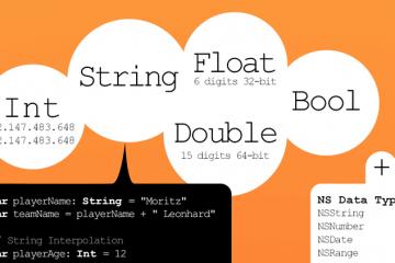 swift infografik teaser